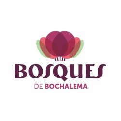 Logo BOSQUES DE BOCHALEMA